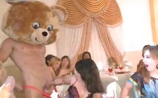 cute bear party