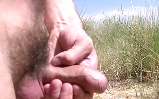 in the dunes at public beach playing with pounder